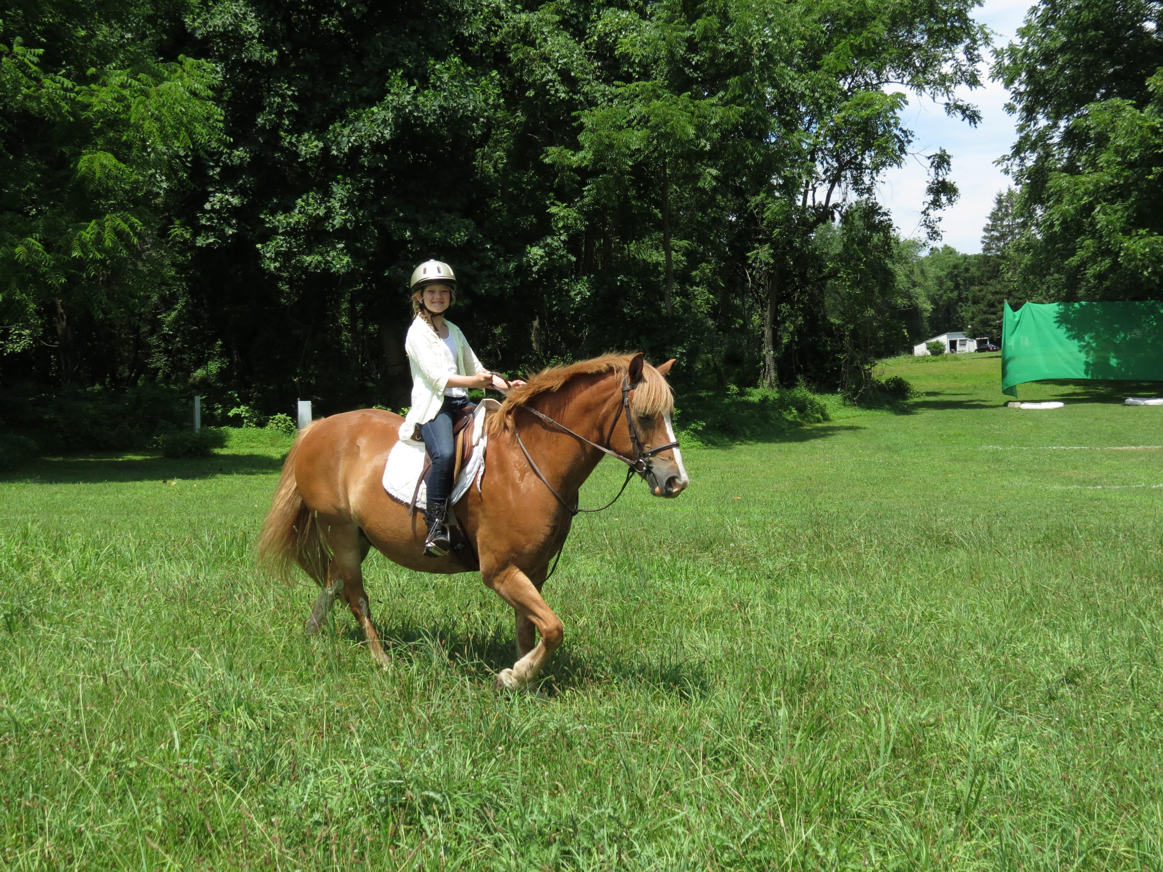 Horse Camp 1_14 | Camp Sankanac